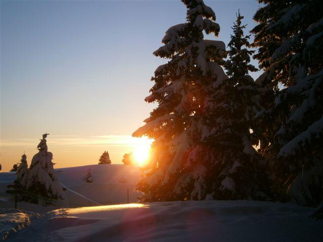 Coucher de soleil au départ de la raquette en forêt